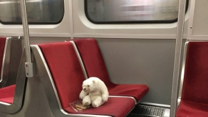 'Ossington Bear' was found riding the subway alone at a train at Ossington Station Monday July 2, 2018. (Rhonda Riche)