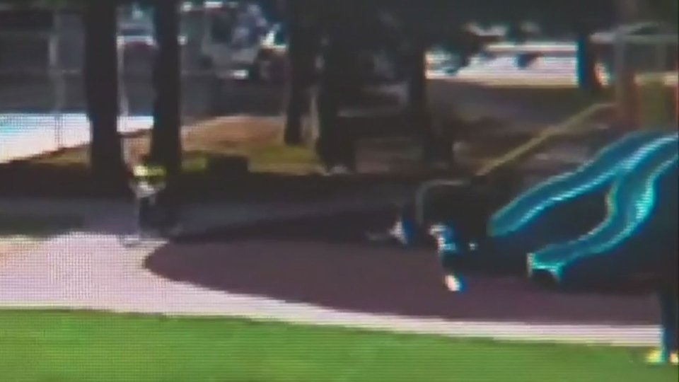 Children flee as bullets ring out during a gun battle near a playground in the Leslie Street and Finch Avenue area Saturday August 11, 2018 in this image made from surveillance video.