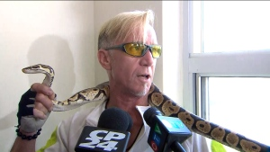 George Warner is seen with a snake he pulled from the walls of a Scarborough apartment building.