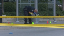 Sherway Gardens mall, stabbing