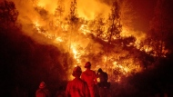 In this Aug. 7, 2018 file photo, firefighters monitor a backfire while battling the Ranch Fire, part of the Mendocino Complex Fire near Ladoga, Calif. (AP Photo/Noah Berger)