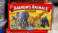 This Monday, Aug. 20, 2018, photo shows a box of Nabisco Barnum's Animals crackers on the shelf of a local grocery store in Des Moines, Iowa. Mondelez International says it has redesigned the packaging of its Barnum's Animals crackers after relenting to pressure from People for the Ethical Treatment of Animals. (AP Photo/Charlie Neibergall)