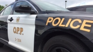 Ontario Provincial Police pulled over a trucker who was watching TV while driving Tuesday. (File photo)