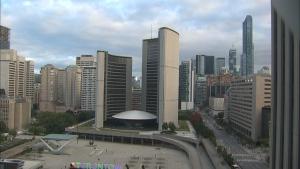 city council,