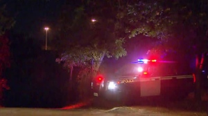 Police are investigating a fatal fall in North York.