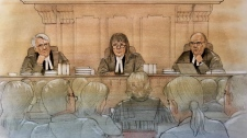 Judges at the Court of Appeal for Ontario listen to the provincial government's challenge to a lower court ruling striking down Bill 5. (John Mantha)