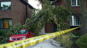 Police tape guards against fallen power lines after a large tree branch fell in a west-end Toronto neighbourhood Friday, Sept. 21, 2018. THE CANADIAN PRESS/Graeme Roy