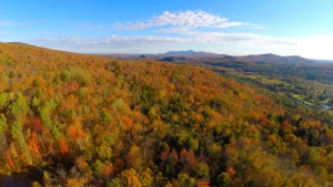 Fall colors in on a hill in the Mount Foster Nature Reserve in Quebec is shown in this undated handout photo. THE CANADIAN PRESS/HO-Nature Conservancy of Canada