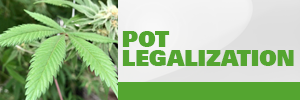 CP24 Pot Legalization promo button