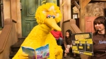 "In this April 10, 2008, file photo Lynn Finkel, stage manager for ""Sesame Street"" slates a taping with Big Bird in New York. The puppeteer who has played Big Bird on ""Sesame Street"" is retiring after nearly 50 years on the show. (AP Photo/Mark Lennihan, File)"