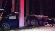 The driver of a Tesla was rushed to hospital after crashing into a pole in Mississauga. (Mike Nguyen/ CP24)