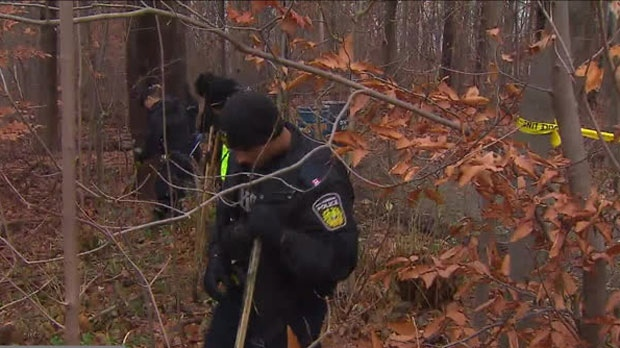 Police are searching for a woman and a baby after evidence of childbirth was found in a Mississauga park.