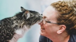 A cat is named Baloo nuzzles with a vet technician in a handout photo from the Montreal SPCA. THE CANADIAN PRESS/HO-Montreal SPCA