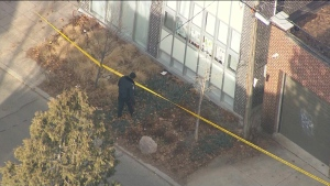 A police officer searches a patch of grass near the scene of a shooting at Bathurst Street and Vaughan Road on Dec. 18, 2018. (Chopper 24)