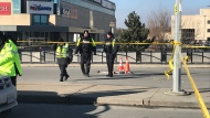 Police investigate after a pedestrian was fatally struck by a dump truck on Lawrence Avenue near Allen Road Wednesday January 16. (Cristina Tenaglia /CP24)