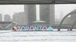Snow blows over Nathan Phillips Square in downtown Toronto during a winter storm Tuesday February 12, 2019. (Joshua Freeman /CP24)