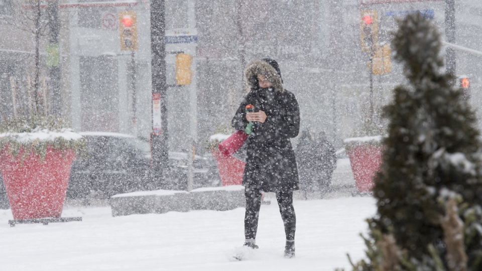 A woman makes way through a winter storm in downtown Toronto on Wednesday February 27, 2019. THE CANADIAN PRESS/Frank Gunn