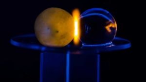 A microwaved grape is shown in a handout photo. THE CANADIAN PRESS/HO-Slepkov Biophotonics Lab, Trent University MANDATORY CREDIT