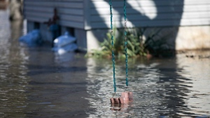 A swing hung from a tree dips into flood waters on Shore Drive Saturday, March 16, 2019, in Machesney Park, Ill. Many rivers and creeks in the Midwest are at record levels after days of snow and rain. (Scott P. Yates/Rockford Register Star via AP)