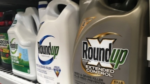 FILE - In this Sunday, Feb. 24, 2019 file photo, containers of Roundup are displayed on a store shelf in San Francisco. A jury in federal court in San Francisco has concluded that Roundup weed killer was a substantial factor in a California man's cancer. (AP Photo/Haven Daley, File)