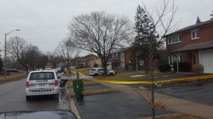Police vehicles are seen outside a home in Jamestown after a man was stabbed there on Mar. 21, 2019. (Jorge Costa)