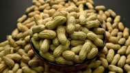 An arrangement of peanuts in New York is shown in a Feb.20, 2015 photo. A new study suggests preschoolers who are allergic to peanuts can be treated safely by eating small amounts of peanut protein with guidance from a specialist. THE CANADIAN PRESS/AP/Patrick Sison