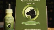 Companion Cannabis