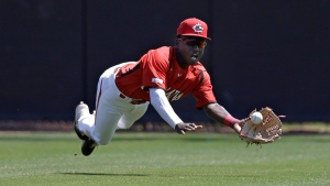 Canada Jr. team centre fielder Dasan Brown makes a diving catch on a flyout by Toronto Blue Jays' DJ Neal during the third inning of a spring training baseball game Saturday, March 23, 2019, in Dunedin, Fla. The Toronto Blue Jays have selected the first Canadian in the 2019 Major League Baseball draft, taking Oakville, Ont., outfielder Dasan Brown in the third round (88th overall) on Tuesday. THE CANADIAN PRESS/AP, Chris O'Meara