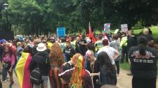 Gage Park Pride brawl