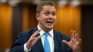 Leader of the Opposition Andrew Scheer rises during Question Period in the House of Commons Wednesday June 19, 2019 in Ottawa. THE CANADIAN PRESS/Adrian Wyld