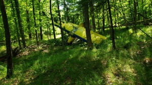 The wreckage of a small float plane crash is pictured. (Handout /TOWNSHIP OF MUSKOKA LAKES FIRE DEPT)