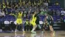 WNBA team