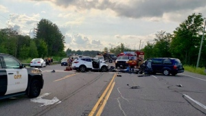 Emergency crews attend the scene of a fatal collision on Highway 6 on July 17, 2019. (@OPP_HSD/Twitter)