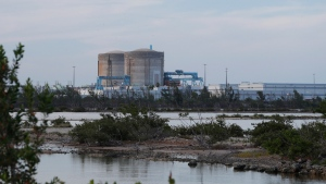Cooling canals next to the Turkey Point Nuclear Generating Station are shown, Friday, July 19, 2019, in Homestead, Fla. The 168-miles of man-made canals serve as the home to several hundred crocodiles, where a team of specialists working for Florida Power and Light (FPL) monitors and protects the American crocodiles. (AP Photo/Wilfredo Lee)