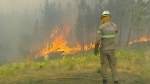 In this grab taken from video on Saturday, July 20, 2019 provided by TVI, members of the emergency services try to extinguish the fire, in Vila de Rei, Portugal. Portuguese authorities say 1,000 firefighters are working to contain wildfires that have injured eight firefighters and one civilian. Portugal's Civil Protection Agency says Sunday that firefighters are combating flames that broke out Saturday across three fronts in the district of Castelo Branco, 200 kilometers (124 miles) northeast of Lisbon, the capital. This is the first major wildfire in Portugal this year. (TVI via AP)