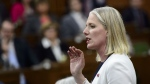 Environment Minister Catherine McKenna says she has asked her department to look at what else Canada can do to reduce the amount of Canadian garbage that is ending up overseas. (File Photo/THE CANADIAN PRESS/Sean Kilpatrick)