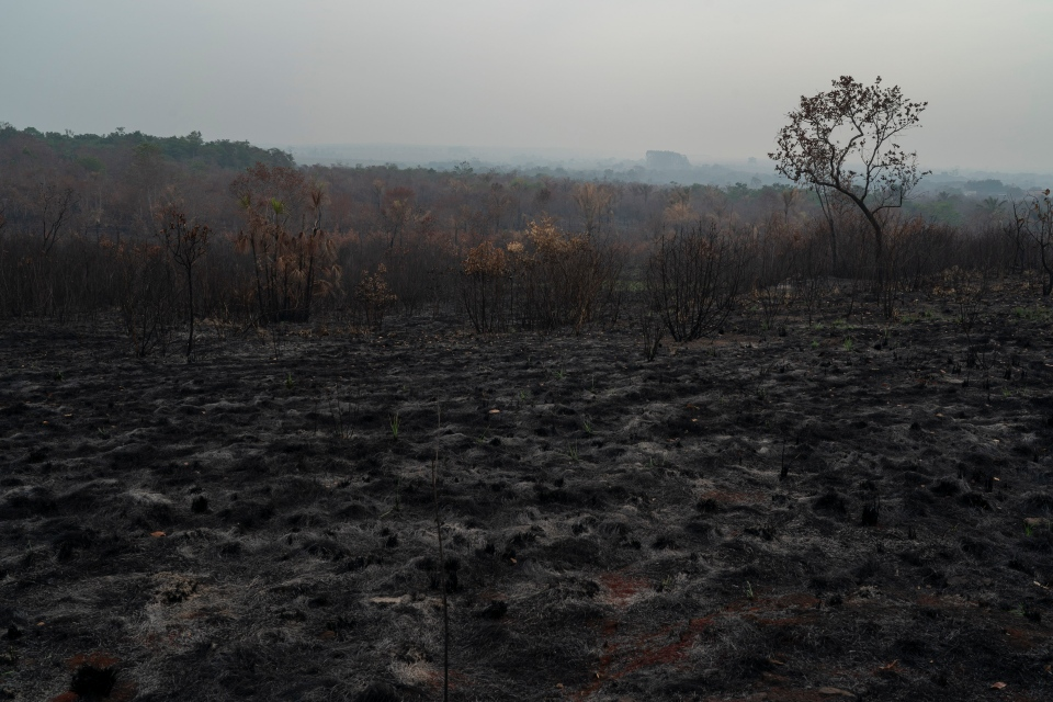 A scorched field is seen in Altamira, Para state, Brazil, Saturday, Aug. 24, 2019. Brazil's President Jair Bolsonaro has tried to temper global concern over the fires, saying previously deforested areas had burned and that intact rainforest was spared. Even so, the fires were likely to be urgently discussed at a summit of the Group of Seven leaders in France this weekend. (AP Photo/Leo Correa)