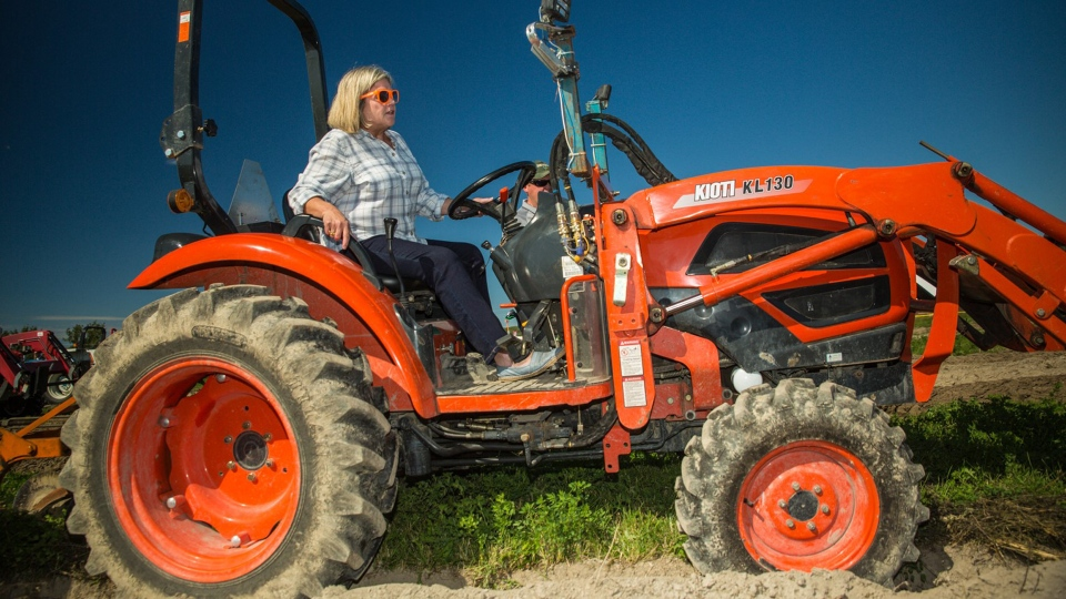 Ontario NDP Leader Andrea Horwath plows a furrow at the International Plowing Match in Verner, Ont. on Tuesday, September 17, 2019. THE CANADIAN PRESS/Vanessa Tignanelli