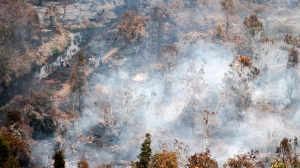 A team of fire fighters stands amid burning trees in Kahayan Hilir, Central Kalimantan, Indonesia, Wednesday, Sept.18, 2019. Forest fires have razed hundreds of thousands of hectares of land in Sumatra and Borneo island, spreading a thick, noxious haze around Southeast Asia. (AP Photo/Fauzy Chaniago)