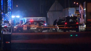 Toronto police said a man is dead after a shooting near Middlefied Road and McNicoll Avenue in Scarborough. (CP24)