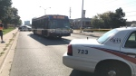 Police are investigating after a pedestrian was struck by a TTC bus on Kingston and Overture Roads. (Ron Dhaliwal)