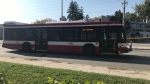 A TTC bus hit a pedestrian in Scarborough on Saturday afternoon. (Ron Dhaliwal)