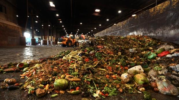 food, waste,