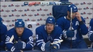 Toronto Maple Leafs season home opener is today.