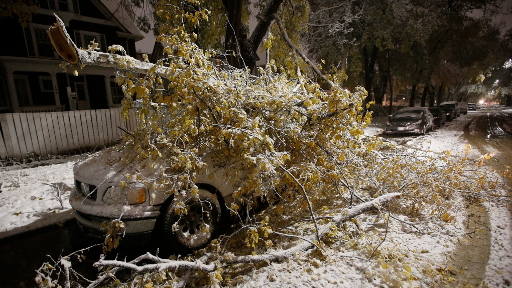 Thousands still without power after snow storm hammers Manitoba