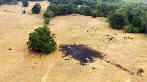 This aerial photo provided by Michael A. Clifton shows the scene after one of the Royal Canadian Air Force's jets crashed in an area near Hampton, Ga., before their scheduled performance at an air show Sunday, Oct. 13, 2019. (Michael A. Clifton via AP)