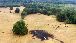 This aerial photo provided by Michael A. Clifton shows the scene after one of the Royal Canadian Air Force's jets crashed in an area near Hampton, Ga., before their scheduled performance at an air show Sunday, Oct. 13, 2019. The Royal Canadian Air Force says one of its pilots is safe after he had to eject from his plane just before an aerobatics show in the United States. (Michael A. Clifton via AP) The Associated Press