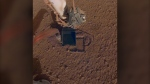 This October 2019 photo made available by NASA shows InSight's heat probe digging into the surface of Mars. On Thursday, Oct. 17, 2019, NASA says the drilling device has penetrated three-quarters of an inch (2 centimeters) over the past week, after hitting a snag seven months ago. (NASA/JPL-Caltech via AP)