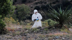A forensic investigator walks the site where nine U.S. citizens, three women and six children related to the extended LeBaron family, were slaughtered when cartel gunmen ambushed three SUVs along a dirt road near Bavispe, at the Sonora-Chihuahua border, Mexico, Wednesday, Nov 6, 2019. Three women and six of their children, related to the extended LeBaron family, were gunned down in an attack while travelling along Mexico's Chihuahua and Sonora state border on Monday. (AP Photo/Marco Ugarte)