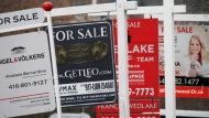 Real estate for sale signs are shown in Oakville, Ont. on Dec.1, 2018. (Richard Buchan / THE CANADIAN PRESS)